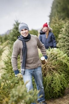 Couple with Xmas tree