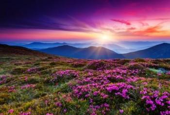 Spring Landscape Sun Rise