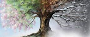 Tree of Seasons